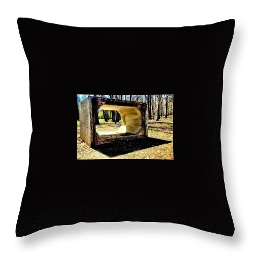 Park Throw Pillow featuring the photograph Fun In The Park by Michele Monk
