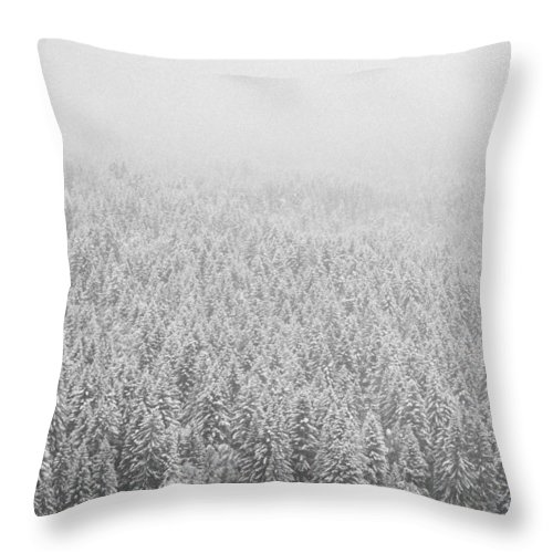 Landscape Throw Pillow featuring the photograph Fur Trees In The Snow by Olivier De Rycke