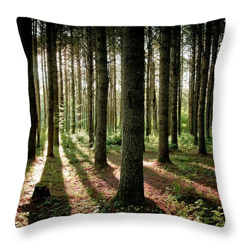 Tranquility Throw Pillow featuring the photograph Galarneau by Guillaume Seguin