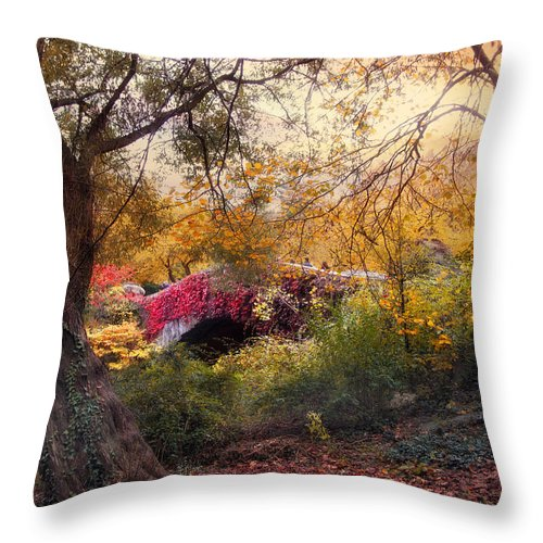 Bridge Throw Pillow featuring the photograph Gapstow Secluded by Jessica Jenney
