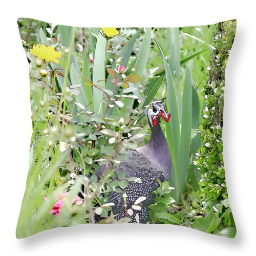 Chicken Throw Pillow featuring the photograph Garden Hen by Mary Underwood
