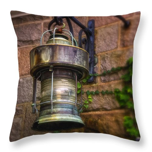Light Throw Pillow featuring the photograph Garden Light by Joe Geraci
