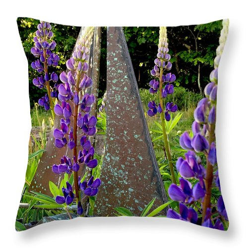 Sailing Throw Pillow featuring the photograph Garden Sailing by Andrea Poliquin Wotkyns