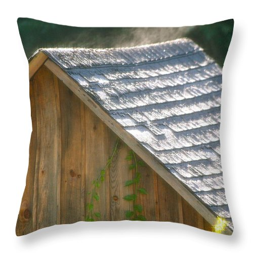 Garden Shed Throw Pillow featuring the photograph Garden Shed by Allan Morrison