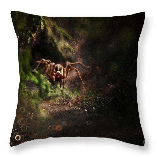 Grass Throw Pillow featuring the photograph Garden Stories Iv by Jaroslaw Blaminsky