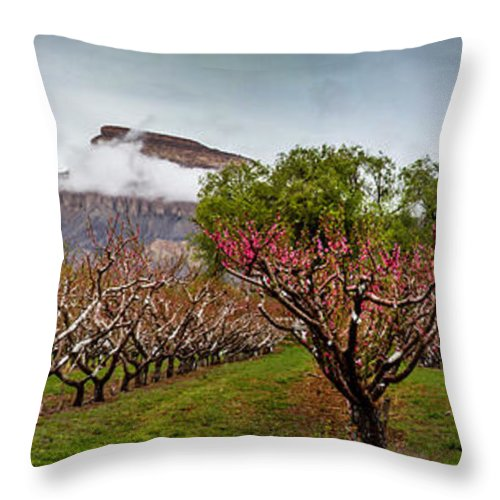 Mt Garfield Throw Pillow featuring the photograph Garfield Panoramic 2 by Laurie Purcell