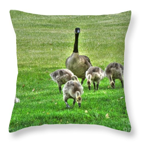 Geese Throw Pillow featuring the photograph Geese Hdr by Janna and Kirk Davis