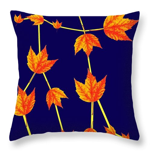 Gemini Throw Pillow featuring the photograph Gemini Constellation Composed By Maple Leaves by Paul Ge