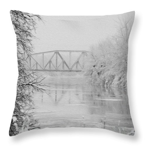 Genesee River Throw Pillow featuring the photograph Genesee River by Tracy Winter