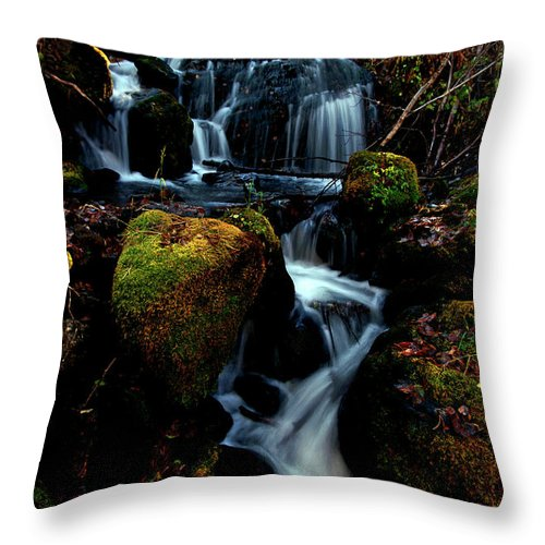 Stream Throw Pillow featuring the photograph Gentle Descent by Jeremy Rhoades