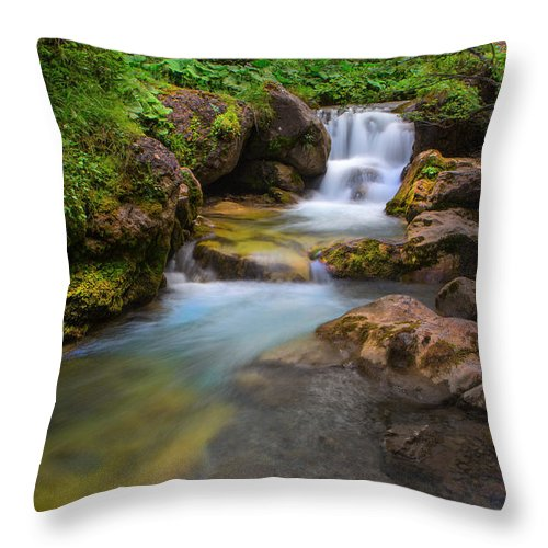 Stream Throw Pillow featuring the photograph Gentle Flow by David Hare