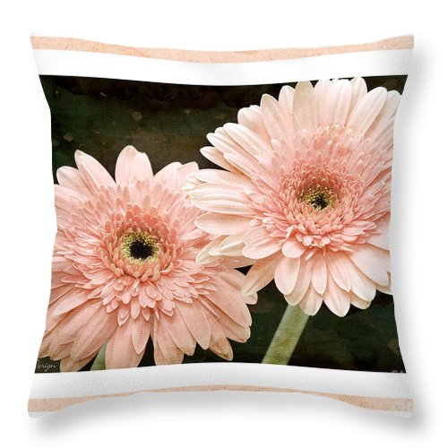 Gerber Throw Pillow featuring the photograph Gerber Daisy 5 by Andee Design