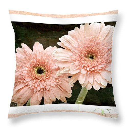 Gerber Throw Pillow featuring the photograph Gerber Daisy Love 5 by Andee Design