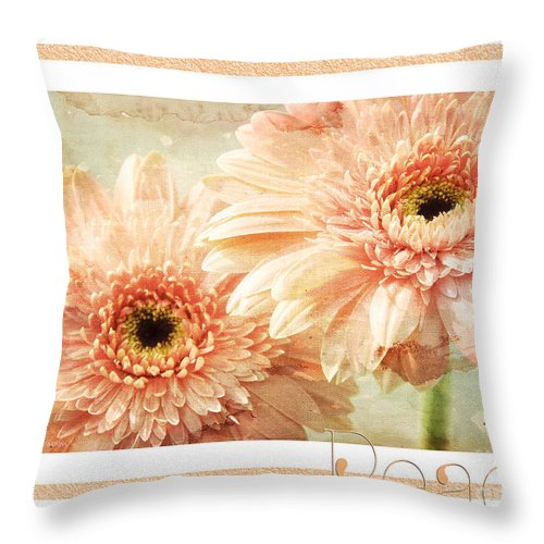 Gerber Throw Pillow featuring the photograph Gerber Daisy Peace 2 by Andee Design