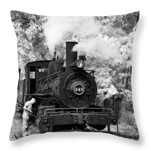 Historical Throw Pillow featuring the photograph Getting Ready by Paul W Faust - Impressions of Light