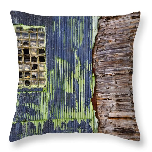 Ghost Dog Throw Pillow featuring the photograph Ghost Dog by Skip Hunt