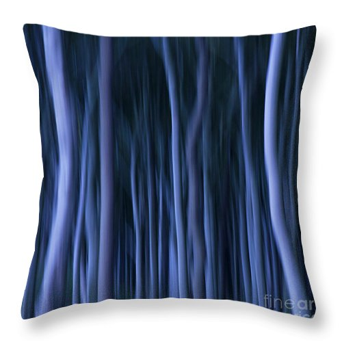 Abstract Throw Pillow featuring the photograph Ghost Forest by Heiko Koehrer-Wagner