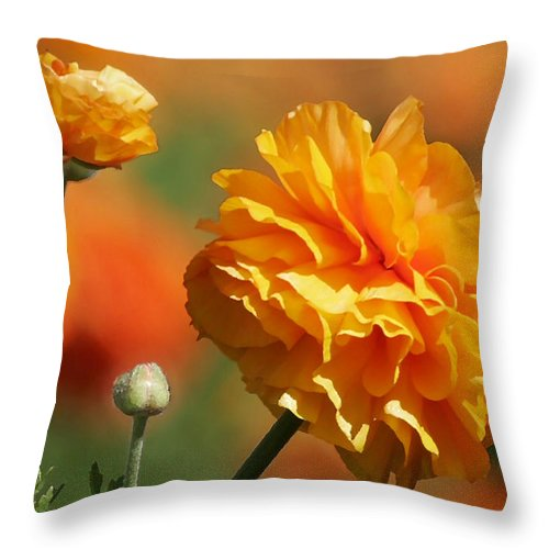 Field Throw Pillow featuring the photograph Giant Tecolote Ranunculus - Carlsbad Flower Fields Ca by Christine Till