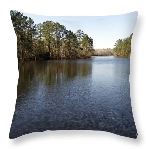 Cenic Tours Throw Pillow featuring the photograph Gibson Pond by Skip Willits