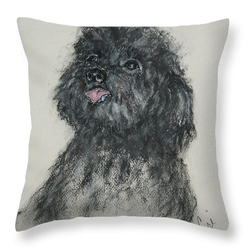Poodle Throw Pillow featuring the drawing Gigi by Cori Solomon