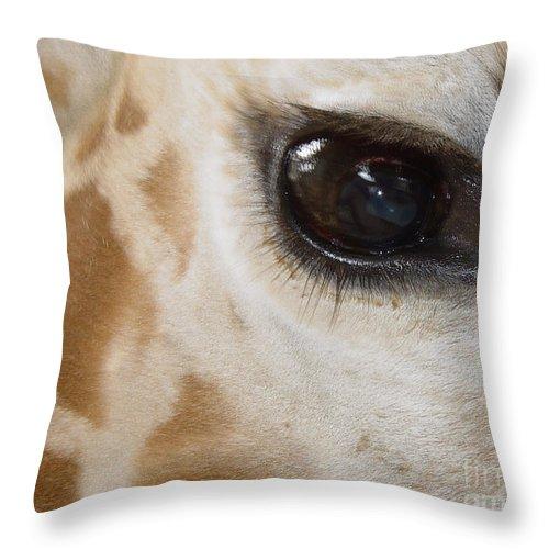 Giraffe Throw Pillow featuring the photograph Giraffe Eye by Heather Coen