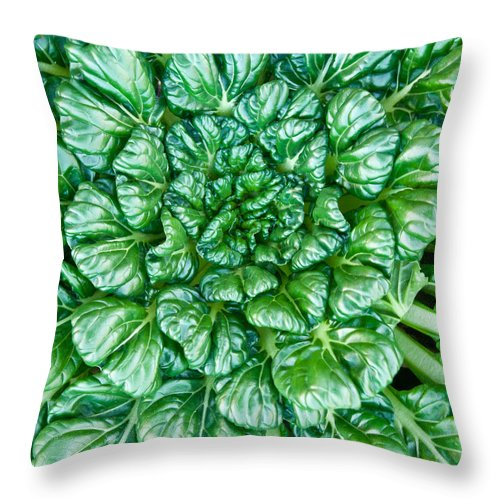 Glabrous Throw Pillow featuring the photograph Glabrous Leaves by Douglas Barnett