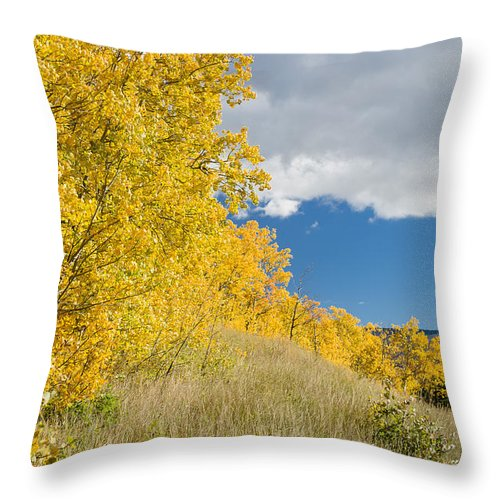 Glacier National Park Throw Pillow featuring the photograph Glacier Fall Color Ridge by Greg Nyquist