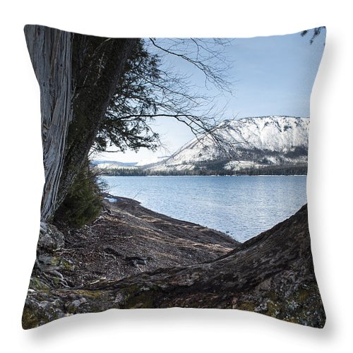 Fall Throw Pillow featuring the photograph Glacier Park View by Fran Riley