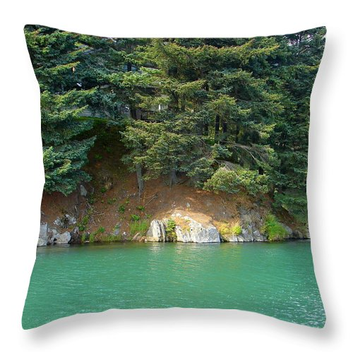 Water Throw Pillow featuring the photograph Glacier Water 1 by Lew Davis