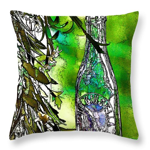 Antique Throw Pillow featuring the photograph Glass Of The Past by Ray Summers Photography