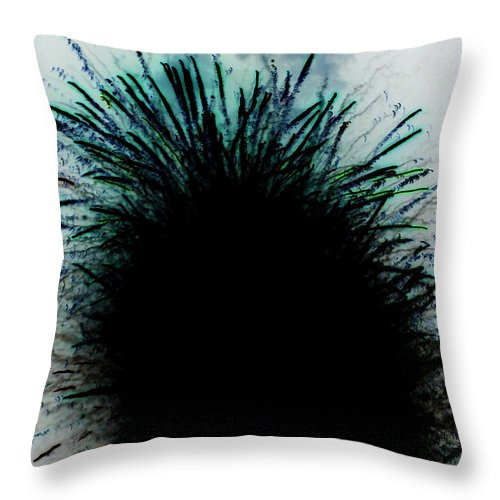 Abstract Throw Pillow featuring the photograph Glory by Laurette Escobar