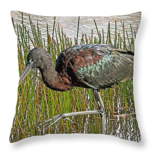 Ibis Throw Pillow featuring the digital art Glossy Ibis by Larry Linton