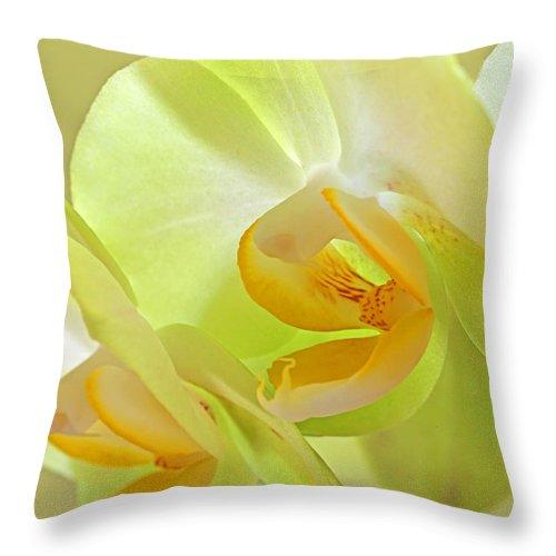 Yellow Orchid Throw Pillow featuring the photograph Glowing Orchid - Lemon And Lime by Gill Billington