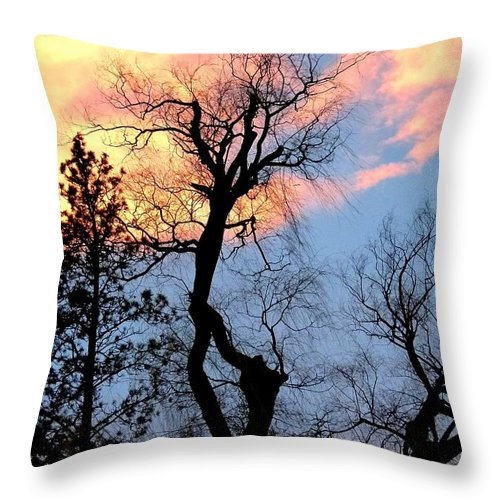 Gnarled Tree Silhouette Throw Pillow featuring the photograph Gnarled Tree Silhouette by Will Borden