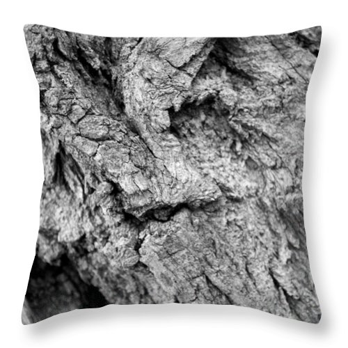 Texture Throw Pillow featuring the photograph Gnarled Wood by Breanna Calkins