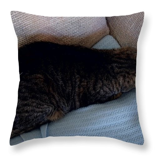 David S Reynolds Throw Pillow featuring the photograph Go Away by David S Reynolds