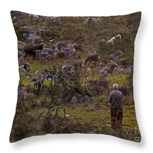 Shepard Throw Pillow featuring the photograph Goat Shepard  #7537 by J L Woody Wooden