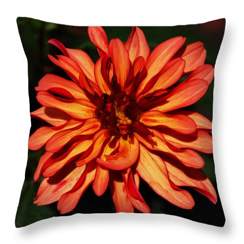 Flower Throw Pillow featuring the photograph Goddess by Aimee L Maher ALM GALLERY