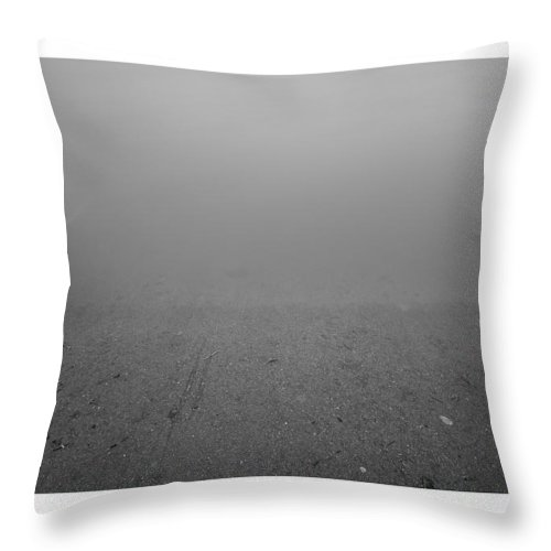 Landscape Throw Pillow featuring the photograph Going Down by Bruno Rosa
