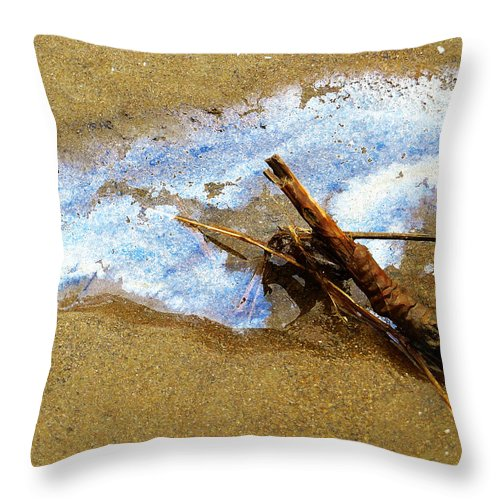 Nature Throw Pillow featuring the photograph Going For A Swim by Shawna Rowe
