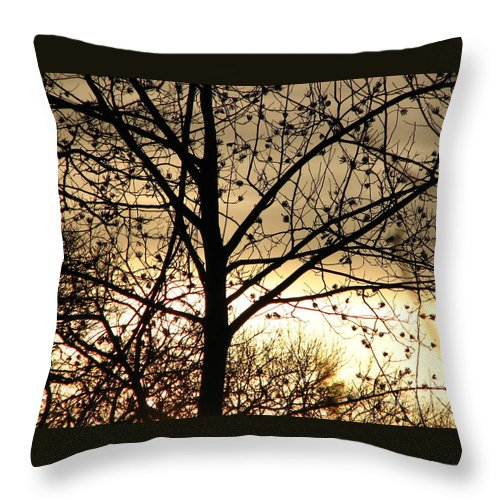 Trees Throw Pillow featuring the photograph Gold Sunset by Roxy Riou