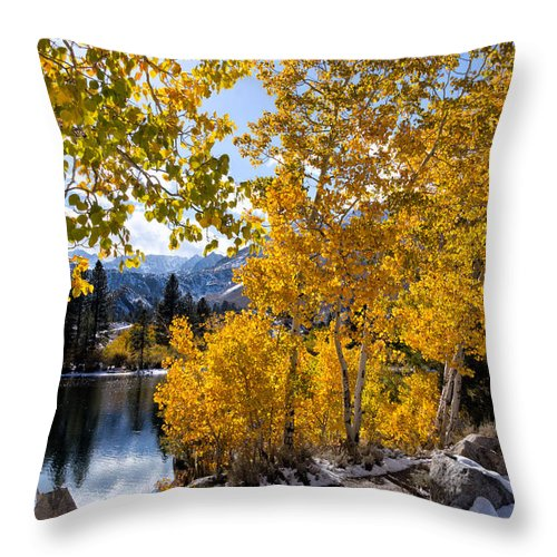 Sierra Nevada Throw Pillow featuring the photograph Golden Aspen On The Lake by Kathleen Bishop