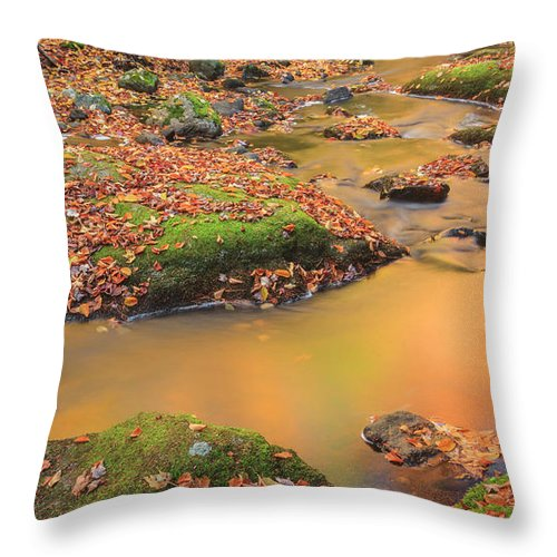 New England Autumn Throw Pillow featuring the photograph Golden by Bill Wakeley