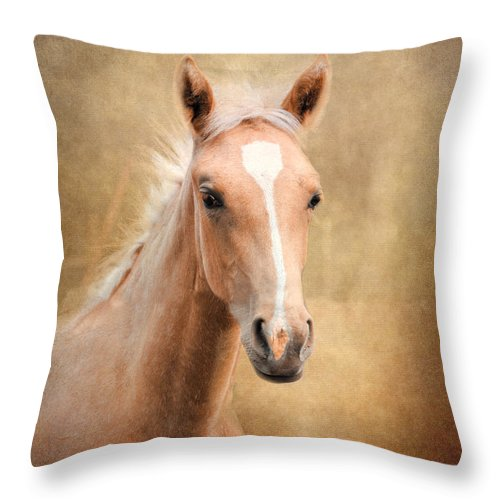 Agriculture Throw Pillow featuring the photograph Golden Girl by Jai Johnson