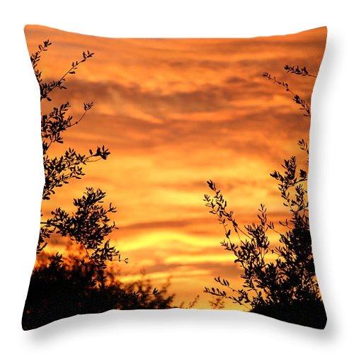Golden Hour Throw Pillow featuring the photograph Golden Hour Sunset by Gregg S