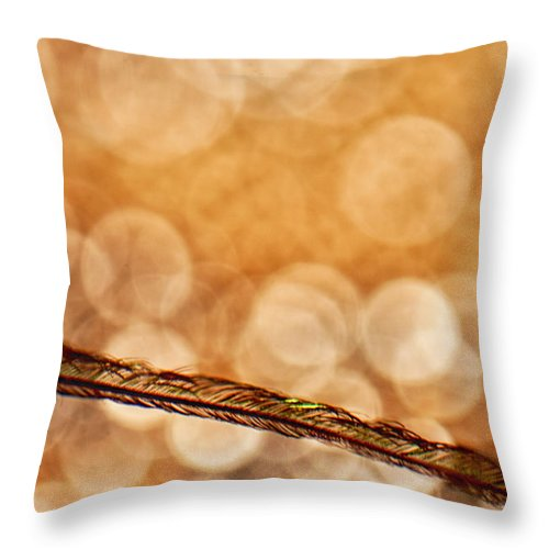 Feather Throw Pillow featuring the photograph Golden by Lauri Novak