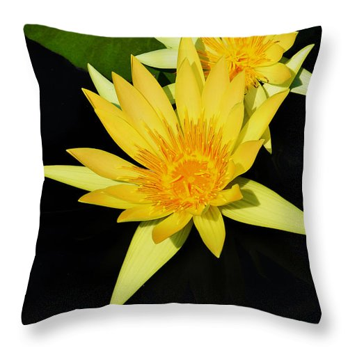 Lily Throw Pillow featuring the photograph Golden Lily by Roger Becker