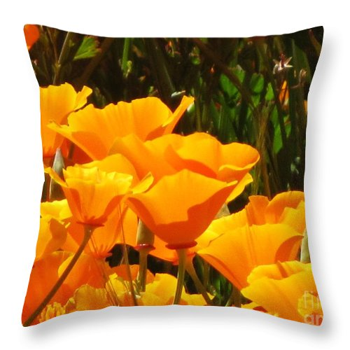 Poppies Throw Pillow featuring the photograph Golden Orange by Sheryl Young