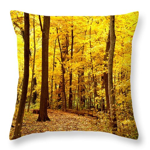 Autumn Throw Pillow featuring the photograph Golden Path by Valerie Fuqua