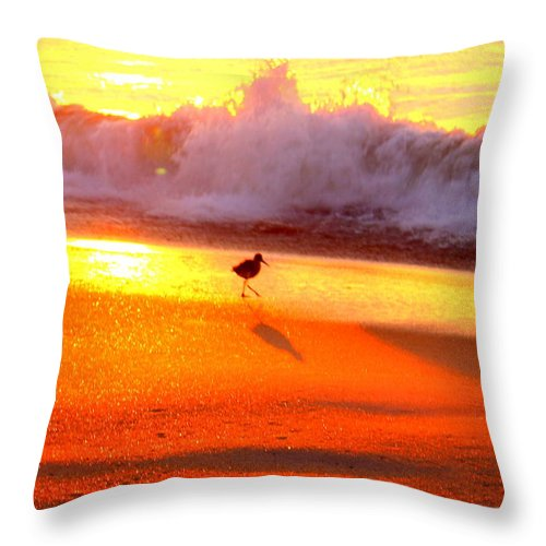 Topsail Throw Pillow featuring the photograph Golden Beach by Rand Wall